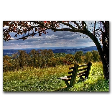 Trademark Fine Art Walk Alone by CATeyes-Canvas Art Ready to Hang