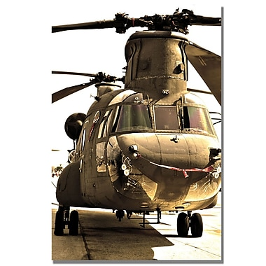 Trademark Fine Art MCat 'Chinook' Canvas Art