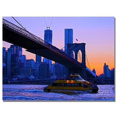 Trademark Fine Art MCat 'NYC' Canvas Art