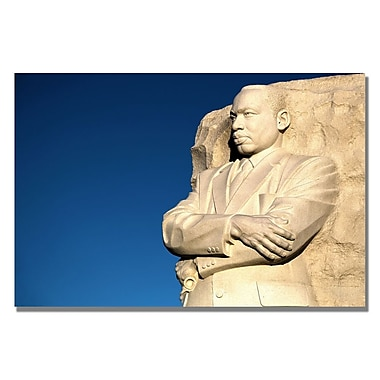 Trademark Fine Art CATeyes 'Genuine Leader' Canvas Art 16x24 Inches