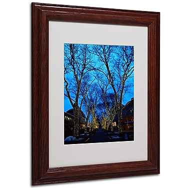 CATeyes 'Boston 2' Matted Framed Art - 11x14 Inches - Wood Frame