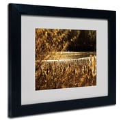 Trademark Fine Art CATeyes 'Boston 6' Matted Art Black Frame 11x14 Inches