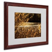 CATeyes 'Boston 6' Matted Framed Art - 16x20 Inches - Wood Frame
