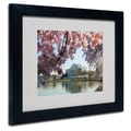 Trademark Fine Art CATeyes 'DC 3' Matted Framed Art
