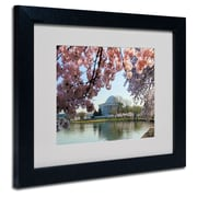 Trademark Fine Art CATeyes 'DC 3' Matted Art Black Frame 11x14 Inches
