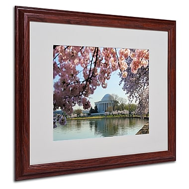 CATeyes 'DC 3' Matted Framed Art - 16x20 Inches - Wood Frame