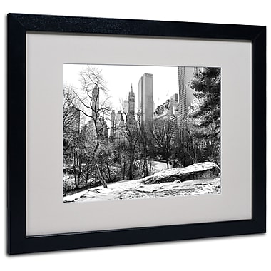 Trademark Fine Art CATeyes 'Central Park' Matted Art Black Frame 16x20 Inches