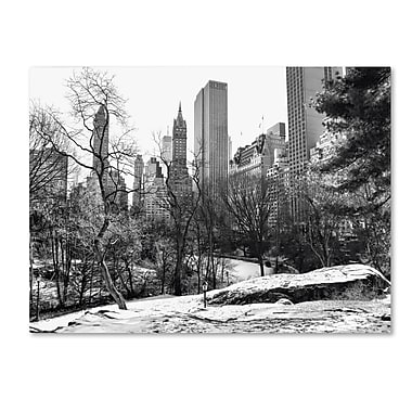 Trademark Fine Art CATeyes 'Central Park' Canvas Art 16x24 Inches