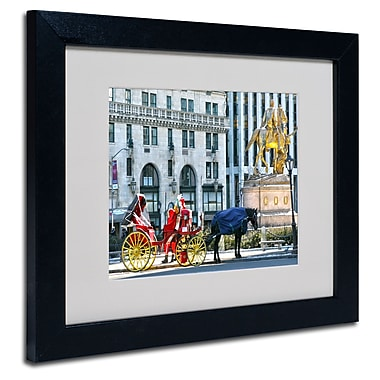 Trademark Fine Art CATeyes 'Central Park 2' Matted Art Black Frame 11x14 Inches