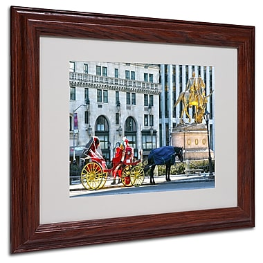CATeyes 'Central Park 2' Matted Framed Art - 11x14 Inches - Wood Frame