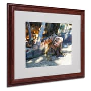 CATeyes 'Virgin Islands 6' Matted Framed Art - 16x20 Inches - Wood Frame