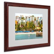 CATeyes 'Virgin Islands 8' Matted Framed Art - 16x20 Inches - Wood Frame