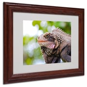 CATeyes 'Virgin Islands 9' Matted Framed Art - 11x14 Inches - Wood Frame