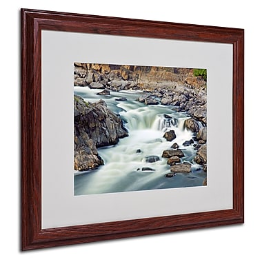 CATeyes 'A Treasure' Matted Framed Art - 16x20 Inches - Wood Frame