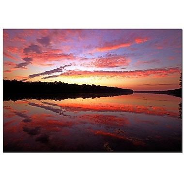 Trademark Fine Art CATeyes 'On Certain Mornings' Canvas Art 16x24 Inches