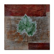 Trademark Fine Art Rusty Leaf by Nicole Dietz-Canvas Art