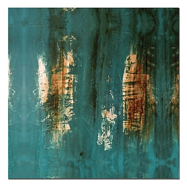Trademark Fine Art The Wash by Nicole Dietz-Canvas Art Ready to Hang