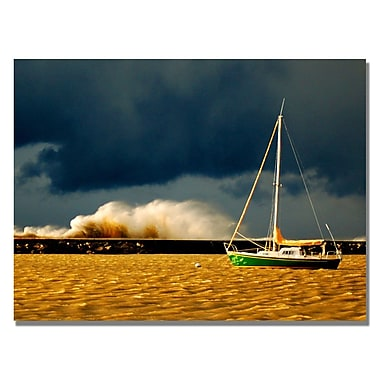 Trademark Fine Art Nicole Dietz 'Lake Erie Storm' Canvas Art