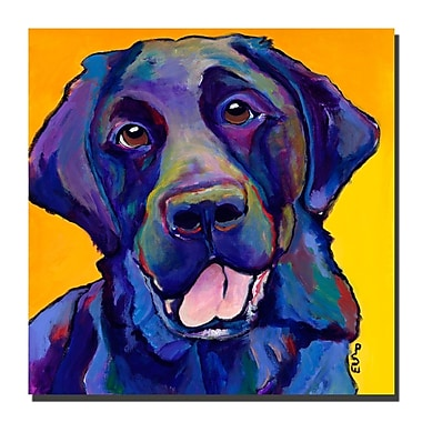 Trademark Fine Art Pat Saunders-White, 'Buddy' Canvas Art 14x14 Inches