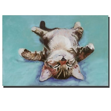 Trademark Fine Art Pat Saunders-White, 'Little Napper' Canvas Art 24x36 Inches