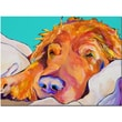 Trademark Fine Art Snoozer King by Pat Saunders-White-Ready to Hang Art 14x19 Inches