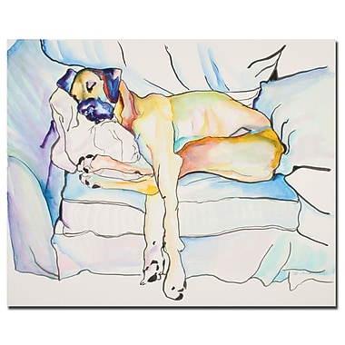 Trademark Fine Art Pat Saunders-White 'Sleeping Beauty' Canvas Art 35x47 Inches