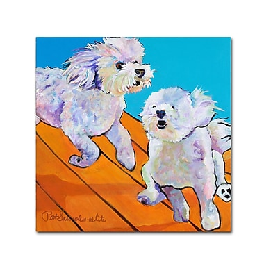 Trademark Fine Art Pat Saunders 'Catch Me' Canvas Art