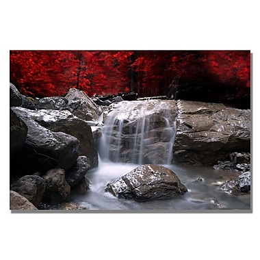 Trademark Fine Art Philippe Sainte-Laudy 'Red Vison' Canvas Art 16x24 Inches