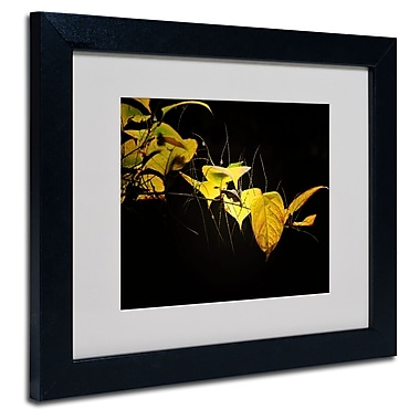 Trademark Fine Art Philippe Sainte-Laudy 'Golding' Matted Art Black Frame 11x14 Inches