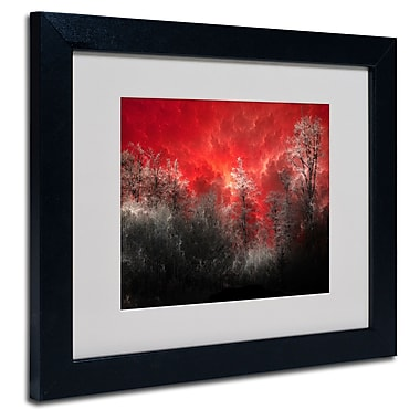 Trademark Fine Art Philippe Sainte-Laudy 'Hot and Cold' Matted Art Black Frame 11x14 Inches