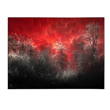 Trademark Fine Art Philippe Sainte-Laudy 'Hot and Cold' Canvas Art 14x19 Inches