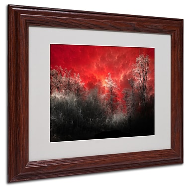 Philippe Sainte-Laudy 'Hot and Cold' Matted Framed Art - 11x14 Inches - Wood Frame