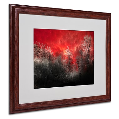 Philippe Sainte-Laudy 'Hot and Cold' Matted Framed Art - 16x20 Inches - Wood Frame