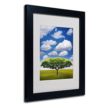Trademark Fine Art Philippe Sainte-Laudy 'Improbable Open Space' Matted Black Frame 11x14 Inches