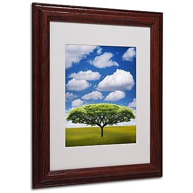 Philippe Sainte-Laudy 'Improbable Open Space' Matted Framed - 11x14 Inches - Wood Frame