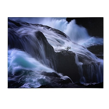 Trademark Fine Art Philippe Sainte-Laudy 'Liquide Illusion' Canvas Art 16x24 Inches
