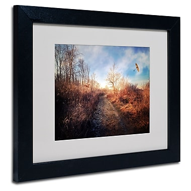 Trademark Fine Art Philippe Sainte-Laudy 'Blast of Wind' Matted Art Black Frame 11x14 Inches
