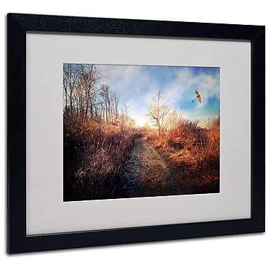 Trademark Fine Art Philippe Sainte-Laudy 'Blast of Wind' Matted Art Black Frame 16x20 Inches