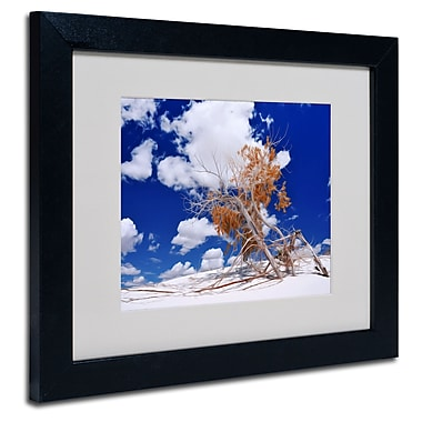 Trademark Fine Art Philippe Sainte-Laudy 'Burn Tree' Matted Framed Art