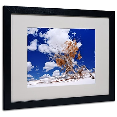 Trademark Fine Art Philippe Sainte-Laudy 'Burn Tree' Matted Art Black Frame 16x20 Inches