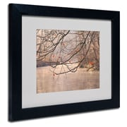 Trademark Fine Art Philippe Sainte-Laudy 'Skylight' Matted Art Black Frame 11x14 Inches