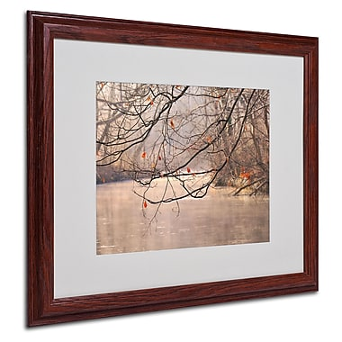 Philippe Sainte-Laudy 'Skylight' Matted Framed Art - 16x20 Inches - Wood Frame