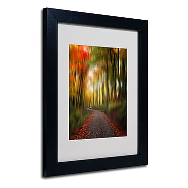 Trademark Fine Art Philippe Sainte-Laudy 'The Lost Path' Matted Art Black Frame 11x14 Inches