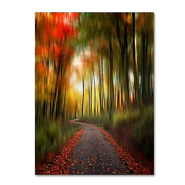 Trademark Fine Art Philippe Sainte-Laudy 'The Lost Path' Canvas Art 14x19 Inches