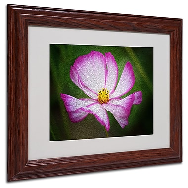 Philippe Sainte-Laudy 'Valentine's Day' Matted Framed Art - 11x14 Inches - Wood Frame