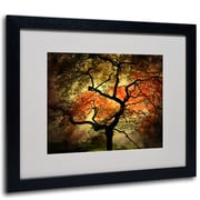 Trademark Fine Art Philippe Sainte-Laudy 'Japanese' Matted Art Black Frame 16x20 Inches