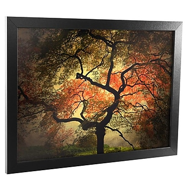Trademark Fine Art Japanese Canvas Framed Art Ready to Hang