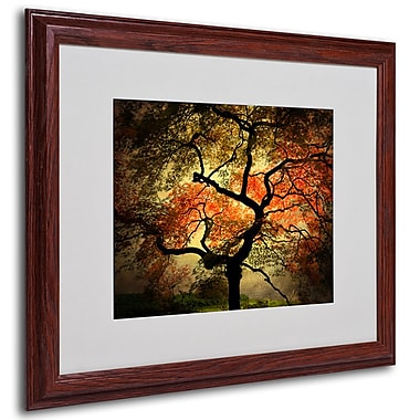 Philippe Sainte-Laudy 'Japanese' Framed Matted Art - 16x20 Inches - Wood Frame