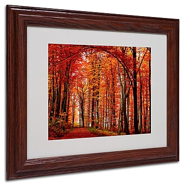 Philippe Sainte-Laudy 'The Red Way' Framed Matted Art - 11x14 Inches - Wood Frame