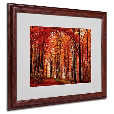Philippe Sainte-Laudy 'The Red Way' Framed Matted Art - 16x20 Inches - Wood Frame